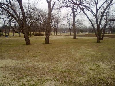 Fritz Park, Main course, Hole 4 Midrange approach