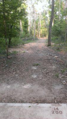 River Grove, Main course, Hole 14 Tee pad