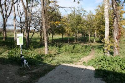 Steeplechase Park, Main course, Hole 5 Tee pad