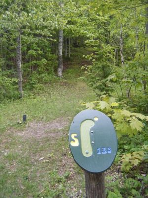 Silver Mountain, Main course, Hole 5 Tee pad