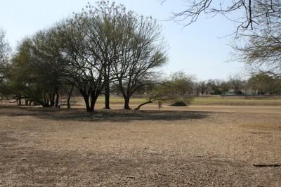 Live Oak City Park, Main course, Hole 13 Midrange approach