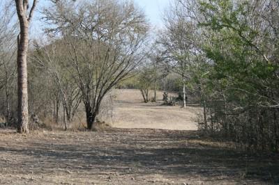 Live Oak City Park, Main course, Hole 25 Long approach