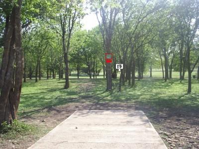 Live Oak City Park, Main course, Hole 13 Tee pad