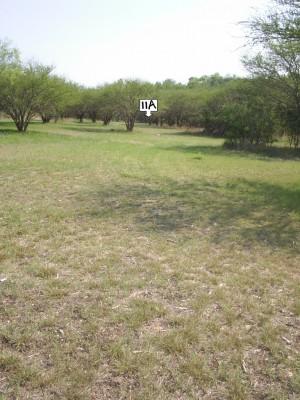 Live Oak City Park, Main course, Hole 11a Long approach