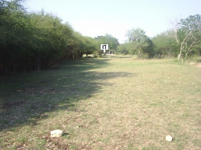 Live Oak City Park, Main course, Hole 17 Short tee pad