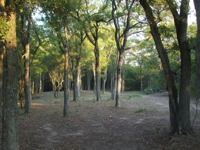 East Metro Park, Main course, Hole 15 Long tee pad