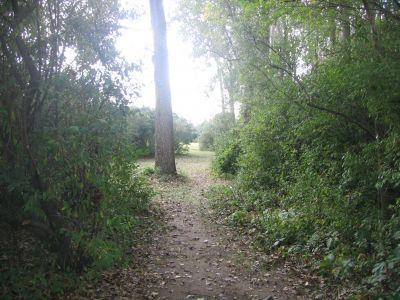 Vienna Park, Main course, Hole 6 Tee pad