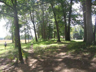 Vienna Park, Main course, Hole 15 Tee pad
