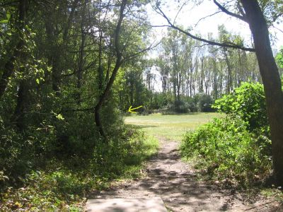 Vienna Park, Main course, Hole 4 Tee pad