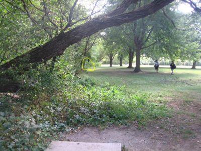Vienna Park, Main course, Hole 3 Tee pad