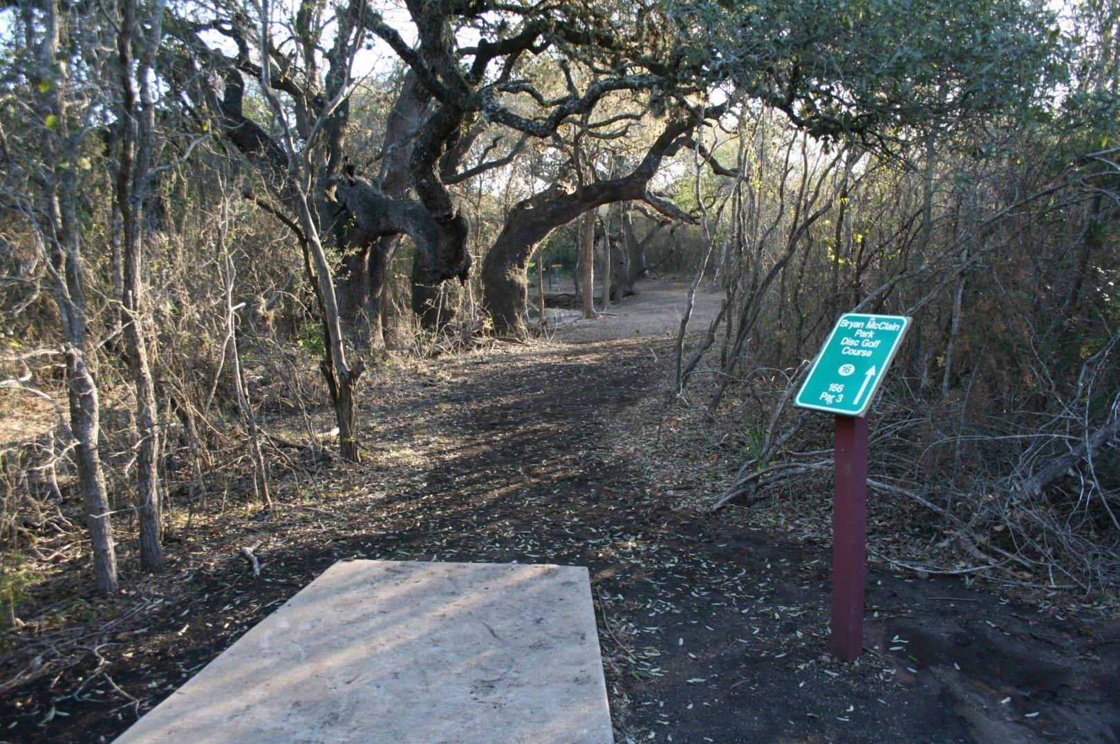 Hole 16 Mcclain Park San Antonio Tx Disc Golf