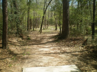Spring Valley, Main course, Hole 20 Tee pad