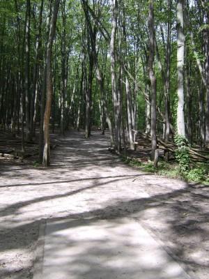 Hickory Hills, Main course, Hole 2 Tee pad