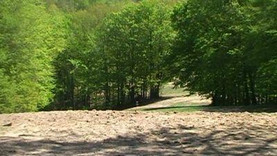 Hickory Hills, Main course, Hole 19 Tee pad
