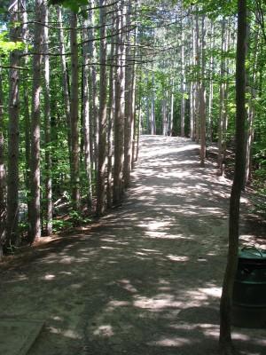 Hickory Hills, Main course, Hole 6 Tee pad