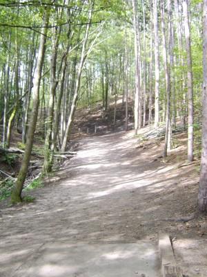 Hickory Hills, Main course, Hole 5 Tee pad
