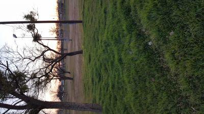 Newman Park, Main course, Hole 5 Tee pad