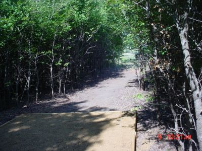 Bill Allen Memorial Park, Main course, Hole 13 Tee pad