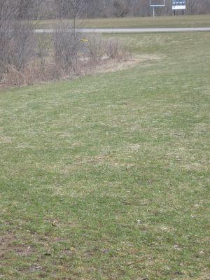 Tim Osmond Sports Complex, Main course, Hole 12 Long approach