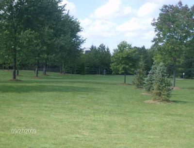 Twin Creeks Park, Main course, Hole 6 Tee pad