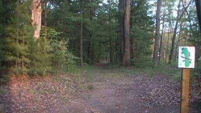 Lake Ann Camp, Main course, Hole 10 Tee pad