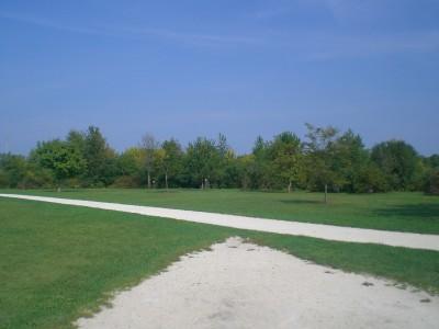 Lippold Park, Main course, Hole 17 Tee pad
