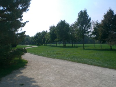 Lippold Park, Main course, Hole 2 Tee pad