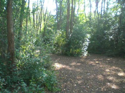 Lippold Park, Main course, Hole 12 Tee pad