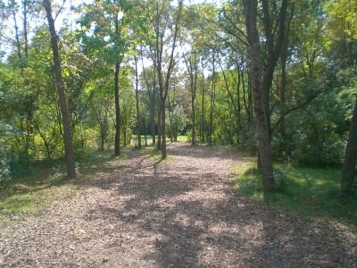 Lippold Park, Main course, Hole 8 Tee pad
