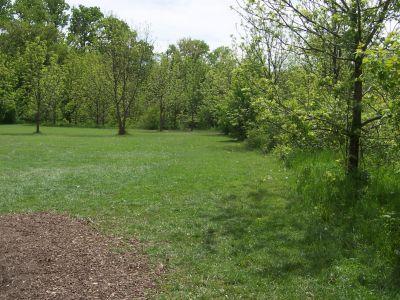 Prairie Park, Main course, Hole 7 Tee pad