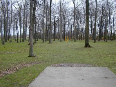 Raintree Park, Main course, Hole 8 Tee pad