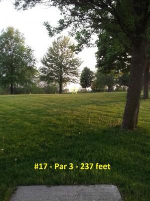 Richmond Hill Park, Main course, Hole 17 Tee pad