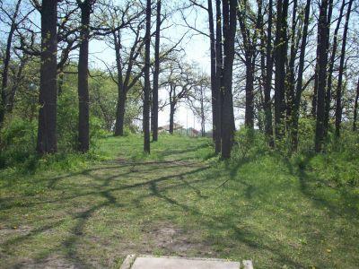 Central Park, Main course, Hole 8 Tee pad