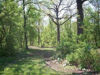 Central Park, Main course, Hole 4 Short approach