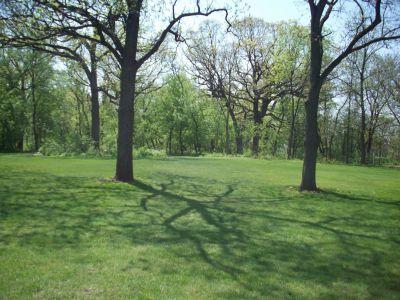 Central Park, Main course, Hole 4 Tee pad
