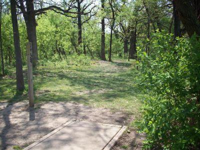 Central Park, Main course, Hole 5 Tee pad