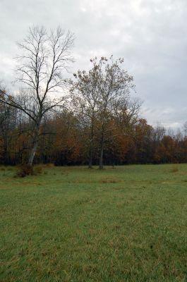 River Bends, Main course, Hole 11 Midrange approach