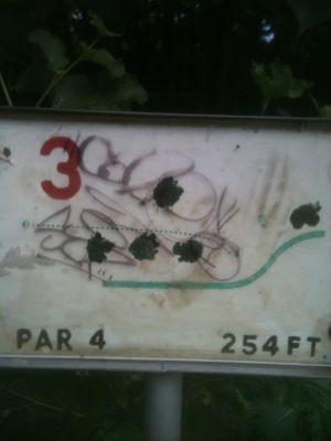 West Park, Main course, Hole 3 Tee pad