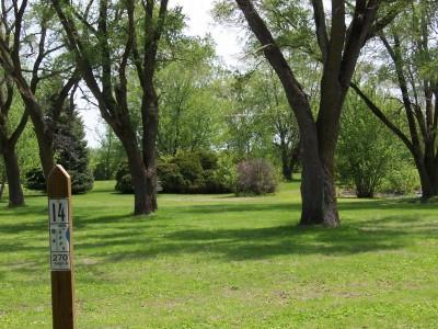 Pioneer Park, Main course, Hole 14 Tee pad