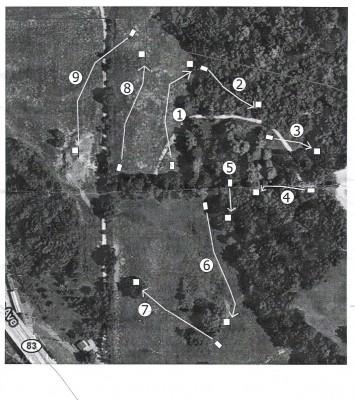 Longwood Centre Park, Main course, Hole 2 Tee pad