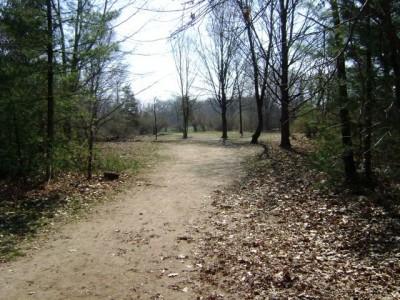 Stony Creek Metropark, Blue course, Hole 5 Long tee pad