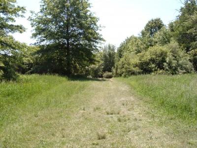 Stony Creek Metropark, Green course, Hole 3 Tee pad