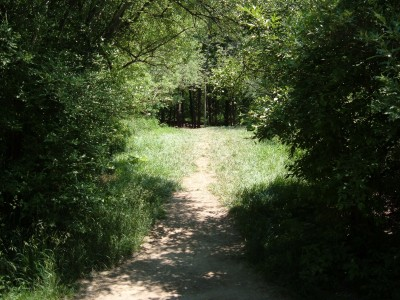 Stony Creek Metropark, Blue course, Hole 13 Tee pad