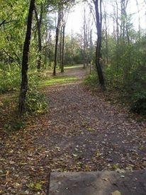 Stony Creek Metropark, Green course, Hole 4 Tee pad