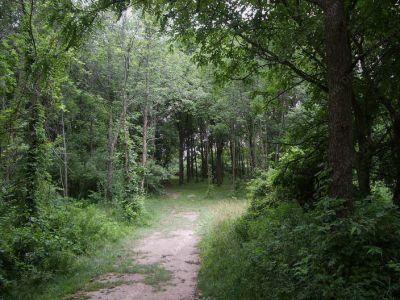 Stony Creek Metropark, Blue course, Hole 9 Long tee pad