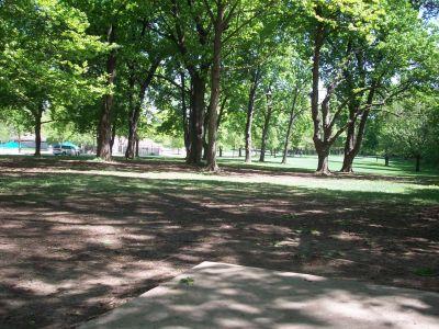 Adler Park, Main course, Hole 6 Tee pad
