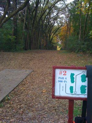 Adler Park, Main course, Hole 2 Tee pad