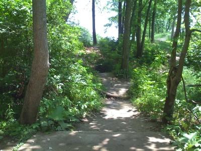 Prospect Park, Main course, Hole 3 Tee pad