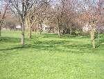 Sergeant Means Park, Main course, Hole 15 Tee pad