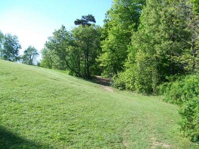 Bay Court Park, Main course, Hole 5 Midrange approach